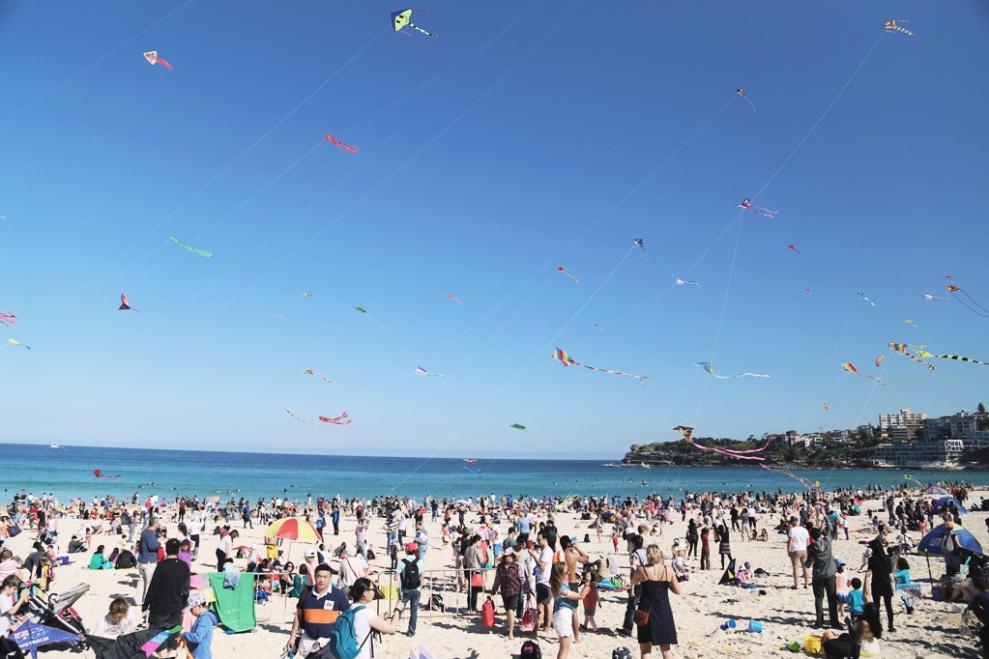 """<img src=""""festival-of-the-winds-sydney-2014.jpg"""" alt=""""Festival of the winds sydney 2014"""" />"""